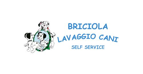 Briciola lavaggio cani self service partner Skylakes